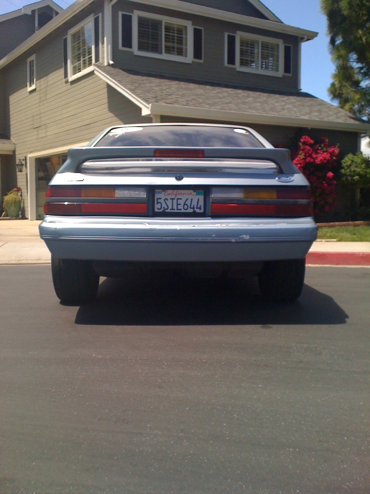 1986 Mustang GT for sale (Bay Area)-img_0264.jpg