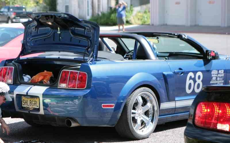 2008 Convertible Roll Bar Ford Mustang Forum