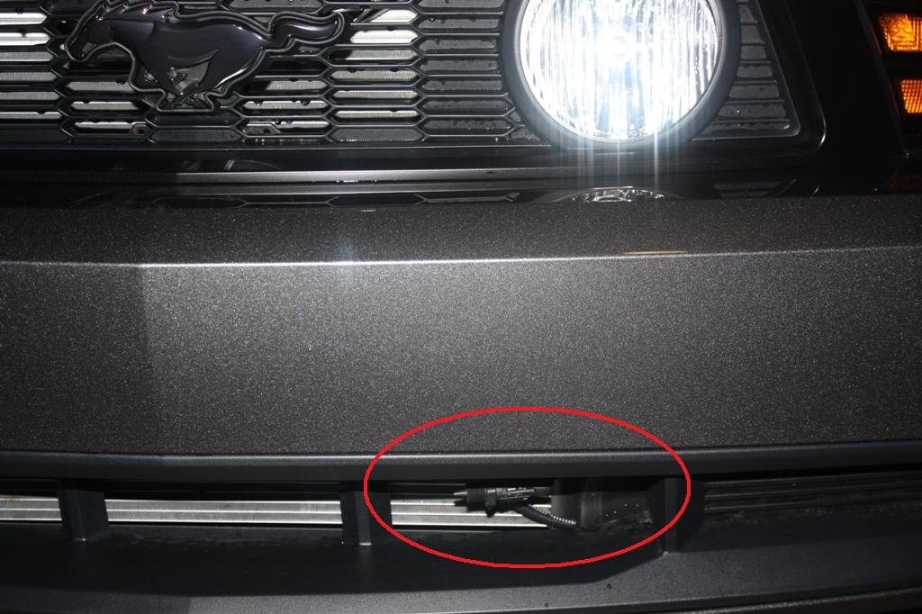 2011 Mustang - What's this in my grill?-img_3657.jpg