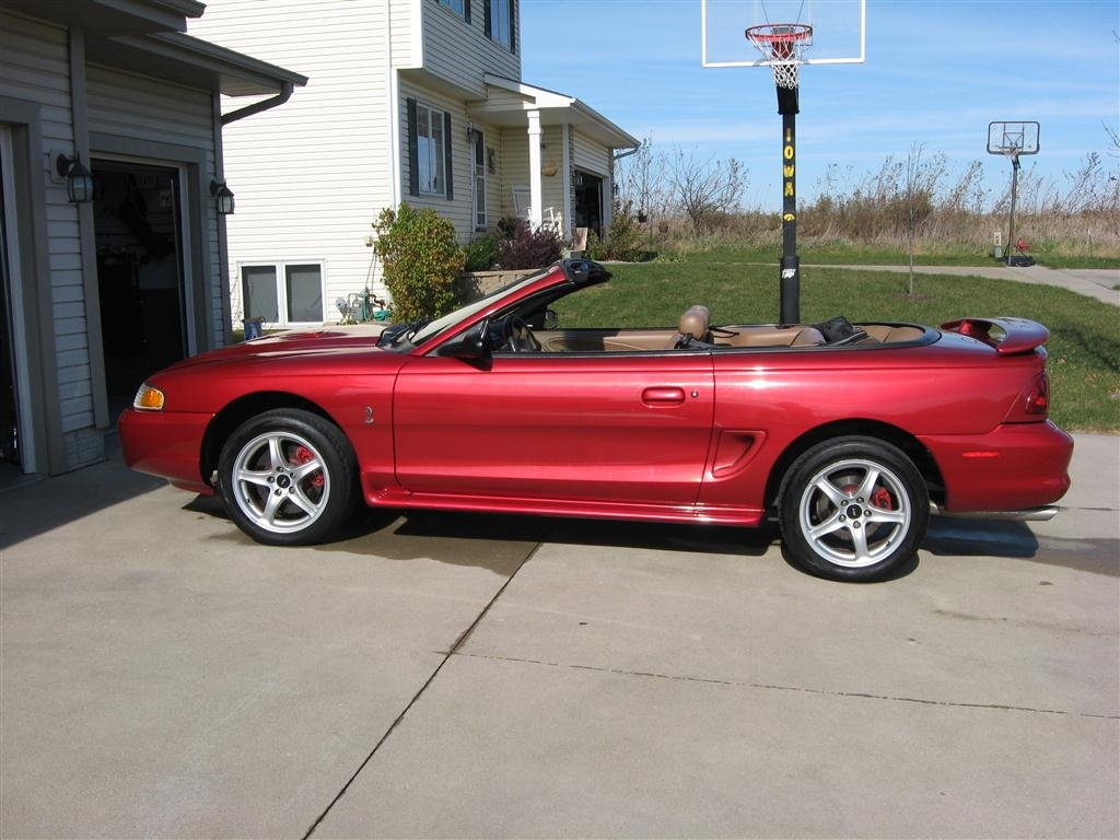 New Owner Of 1998 Cobra Convertible  Lots Of Questions