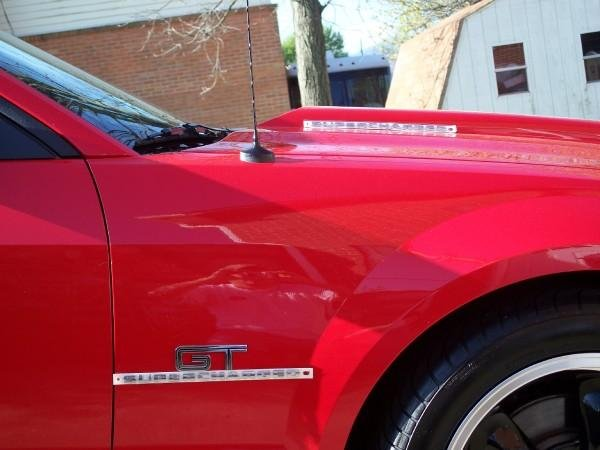 Supercharged Emblem Location Poll Ford Mustang Forum