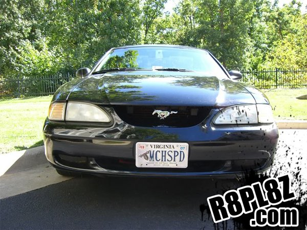 Personalized Front License Plates >> 2011 Mustang GT 5.0 Personalized (Vanity) Plate Ideas? - Ford Mustang Forum