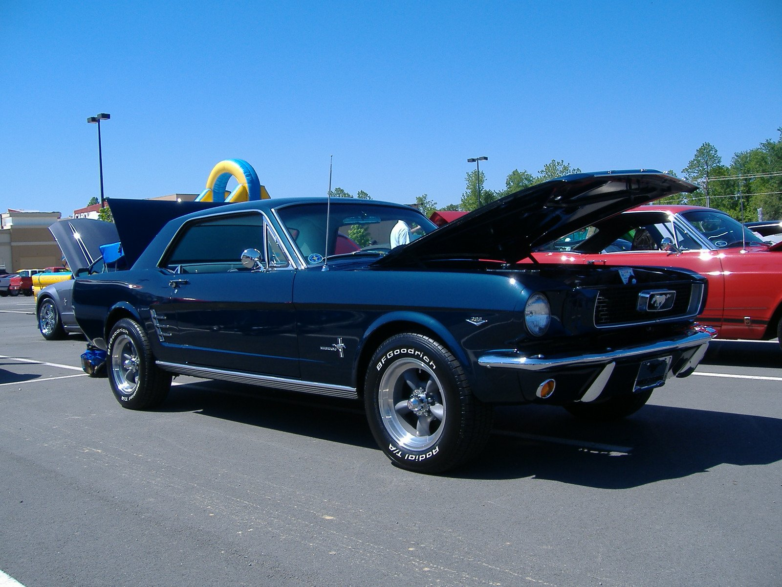 1966 mustang coupe color choice ford mustang forum. Black Bedroom Furniture Sets. Home Design Ideas