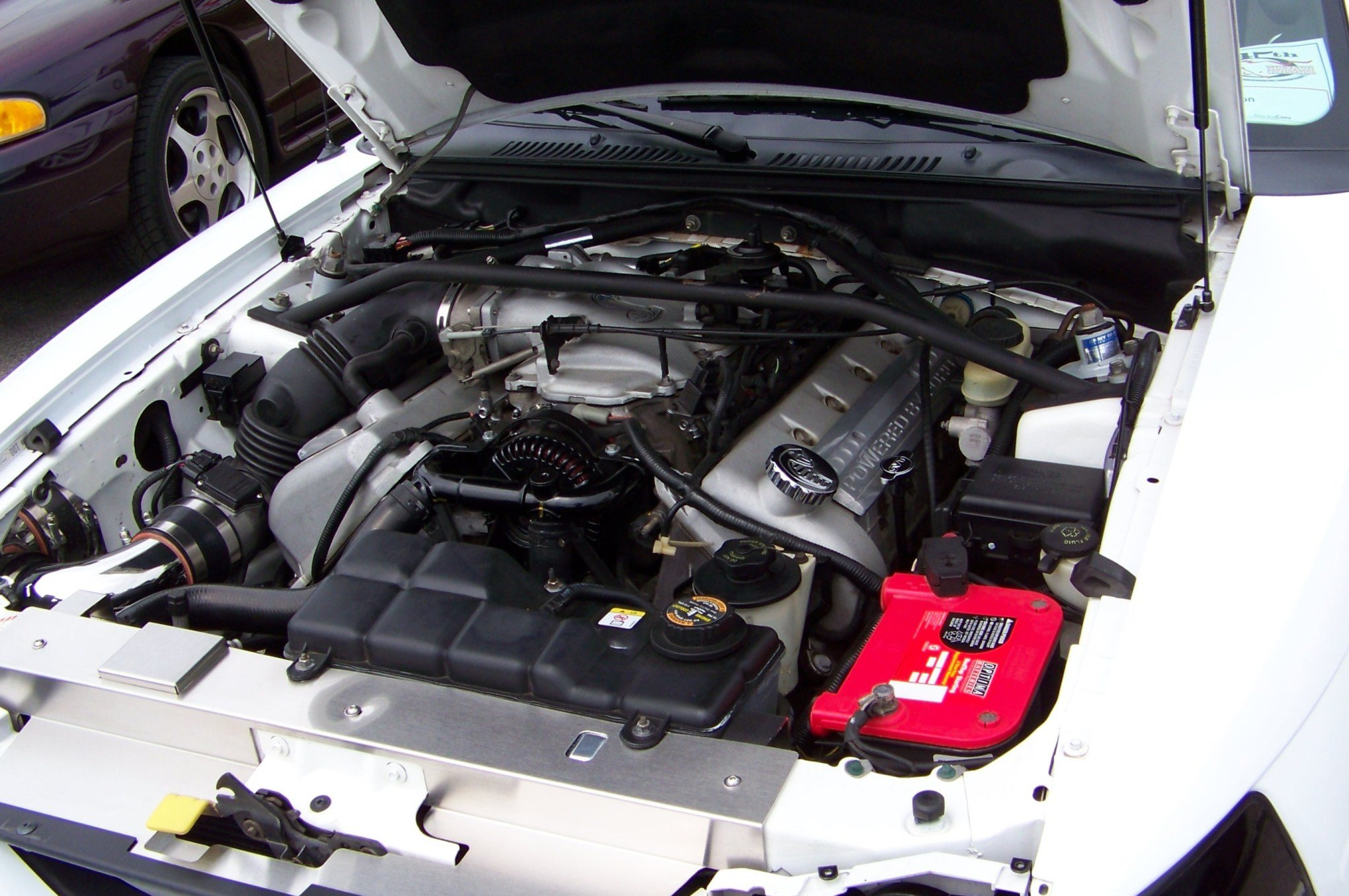2001 Mustang, how to tell GT engine from Cobra engine ...