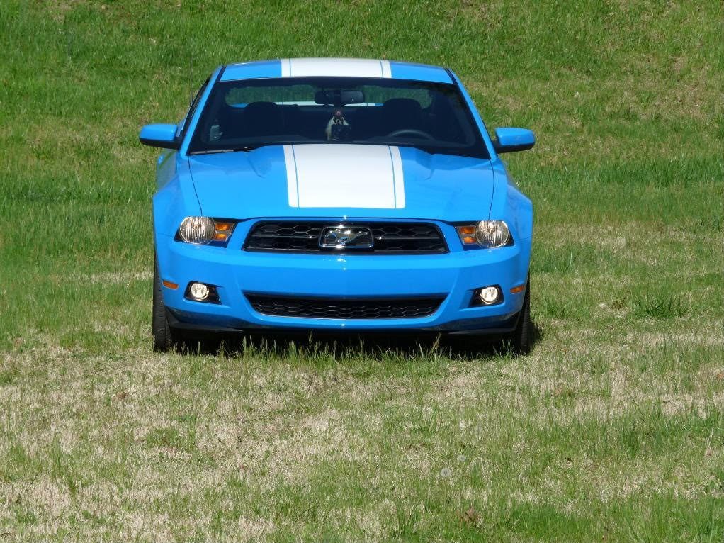 Do you name your car?-mustang.jpg