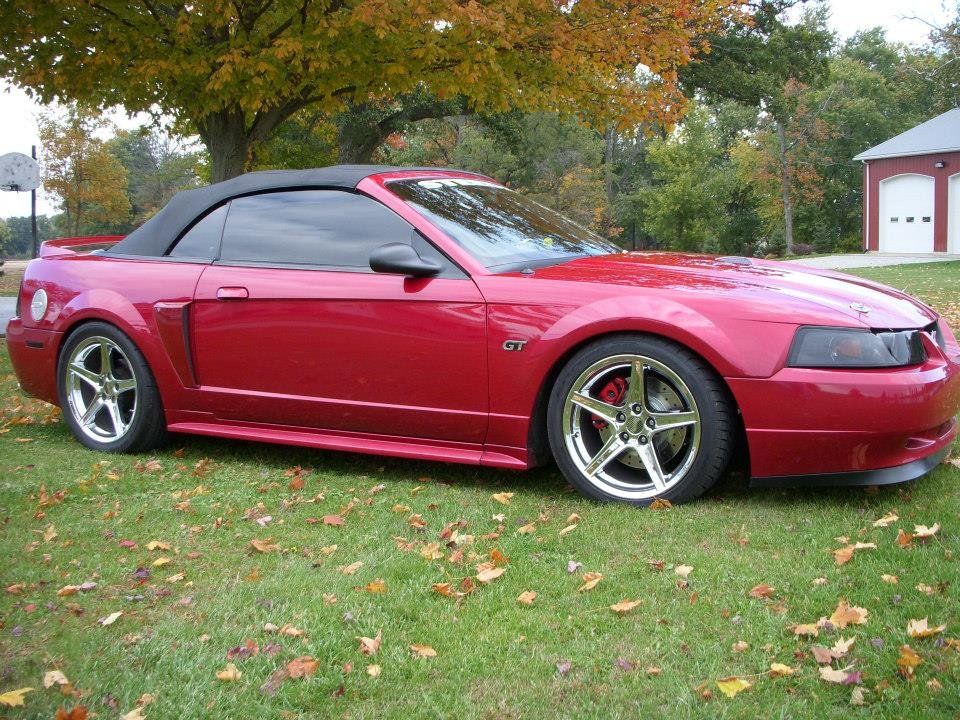 1999 Mustang Gt Convertible Ford Mustang Forum