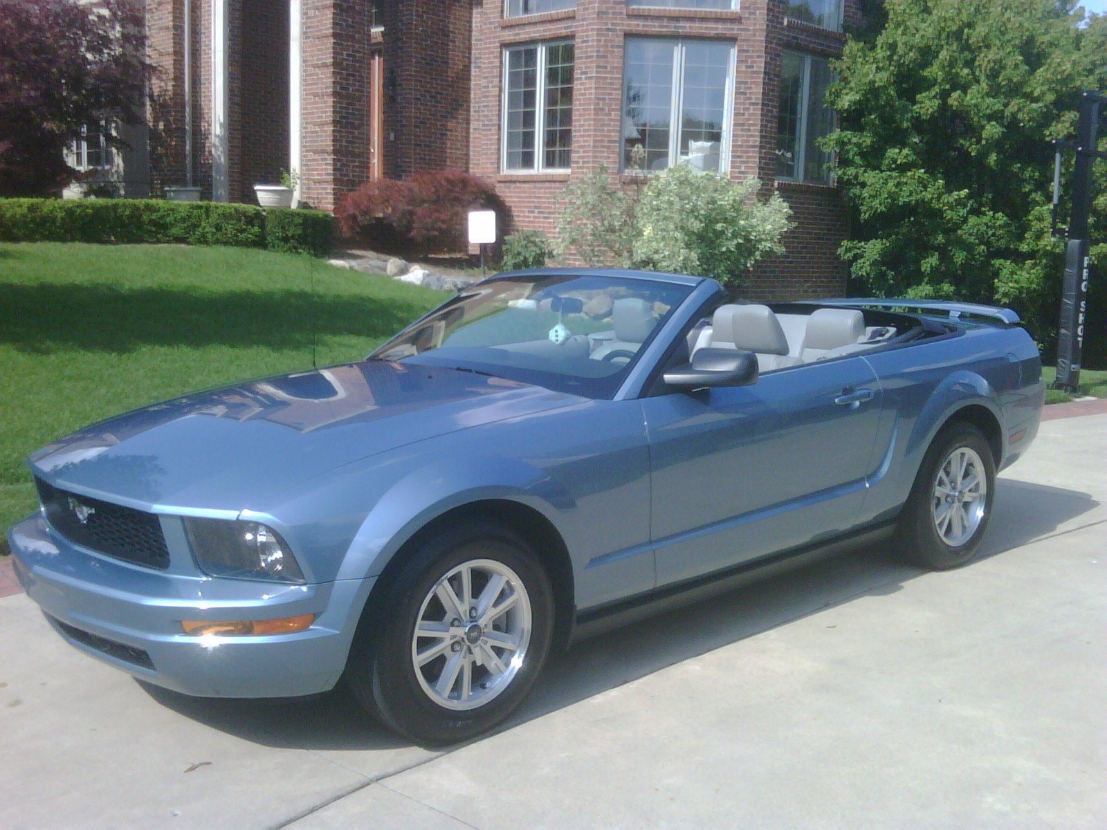 Calling All Windveil Blue Mustang Owners