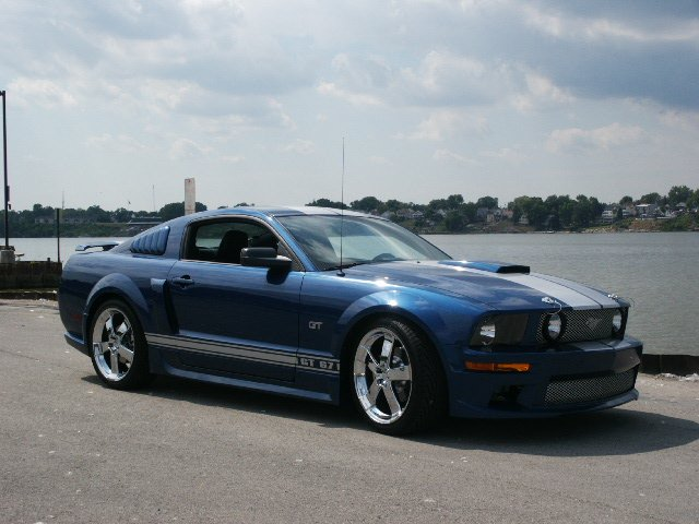 Click Image For Larger Version Name Mustang Pics 002 Jpg Views 15358 Size