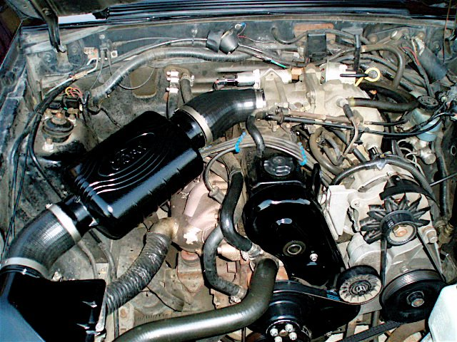 "2.3 L Mustang >> Having Possible ""Fuel"" problems with my '89 4 cyl LX Coupe ..."
