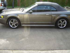 Click image for larger version  Name:Mustang_Picture_02.jpg Views:362 Size:6.5 KB ID:99964