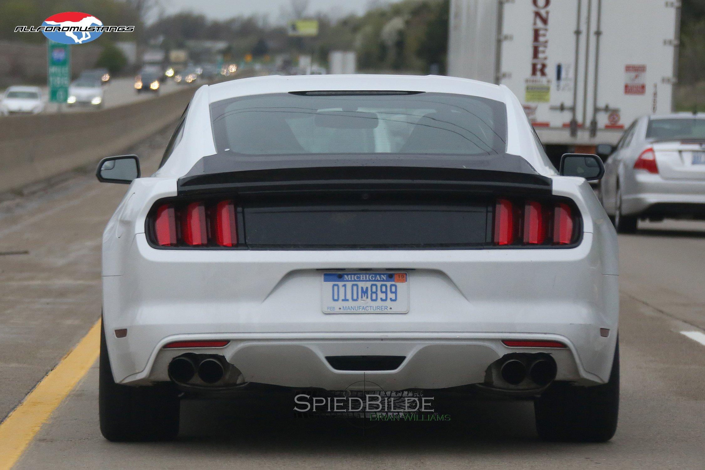 MustangMule_015