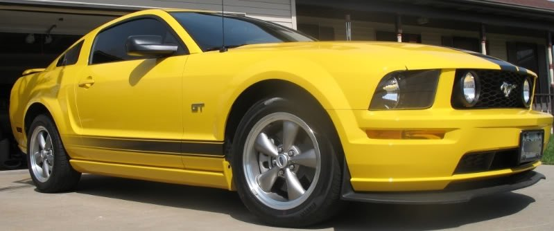 Ford Mustang Wheels >> 2006 White Mustang GT stripes? - Ford Mustang Forum