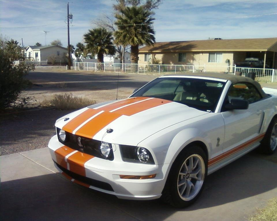 05-09 Ford Mustangs-new-hood.jpg
