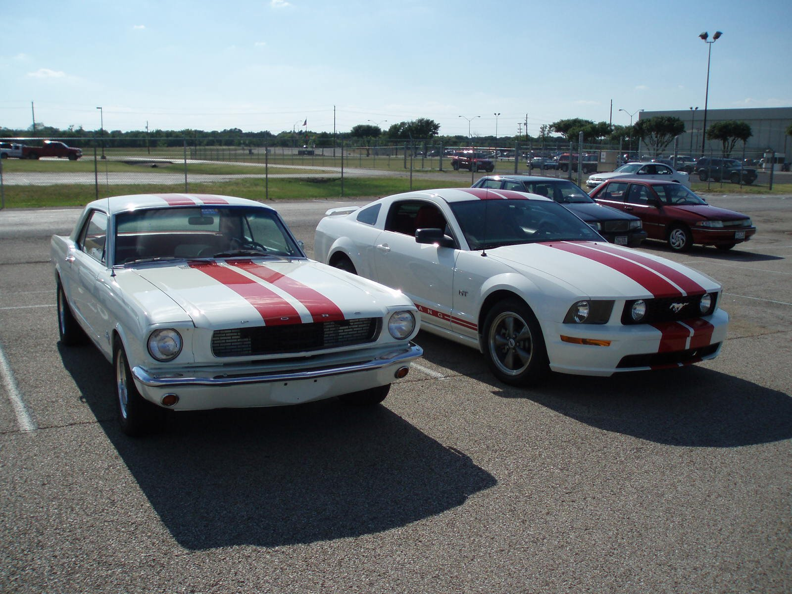 Ford Mustang Forum View Single Post Old Vs New Photo Op
