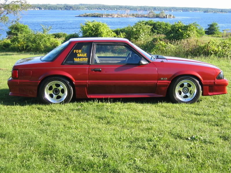 1993 Mustang Lx Notchback Does Anybody Have Any Pics Of A