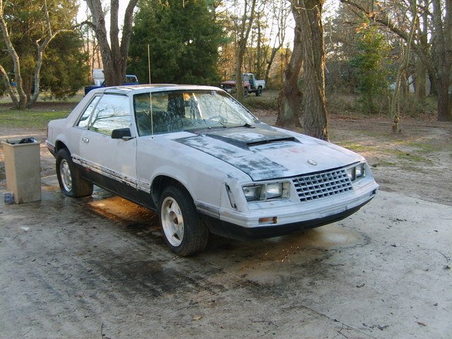 1982 mustang ttop notchback 50 ford mustang forum. solve avidsen astrell  300 problem. nlsc forum   e3c graphics nike practice amp classics aa6abbe0c