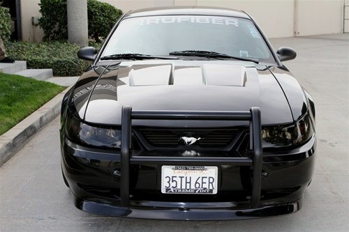 So I Own A  Mustang And I Was Wondering If Anyone Knew Where I Could Get A Grille Guard Something Like These