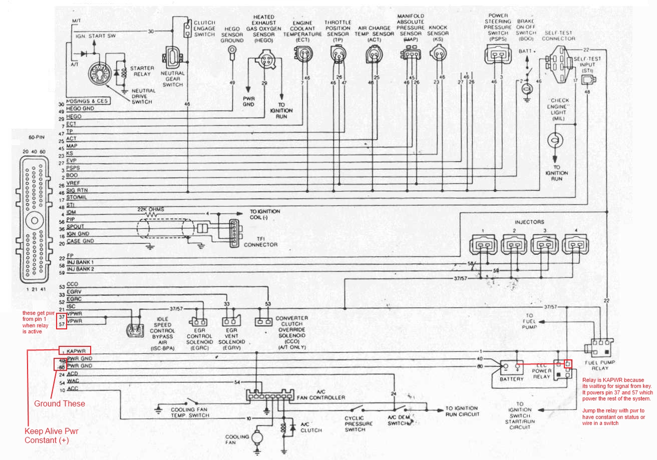 Mustang 5 0 Engine Diagram Reinvent Your Wiring 1995 Harness Ford Efi Detailed Schematics Rh Lelandlutheran Com 2001 F150 50