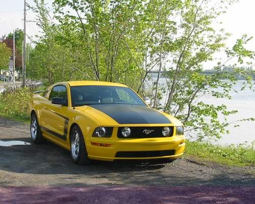 Photos Or Photo Chop Of Screaming Yellow Gt With White Or