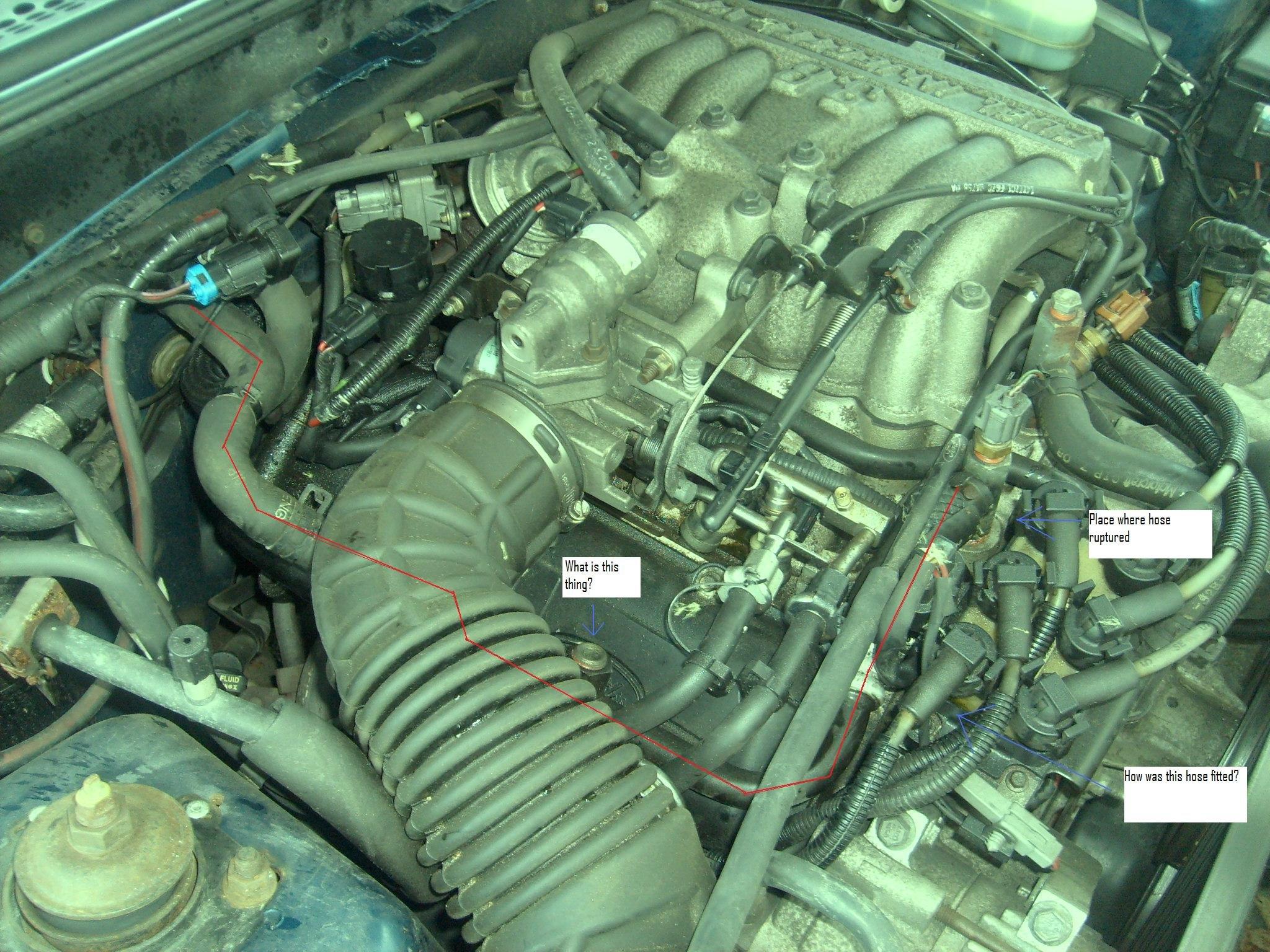 1998 mustang heater hose ruptured ford mustang forum rh allfordmustangs com Chevy Heater Hose Diagram Dodge Caravan Heater Hose Diagram