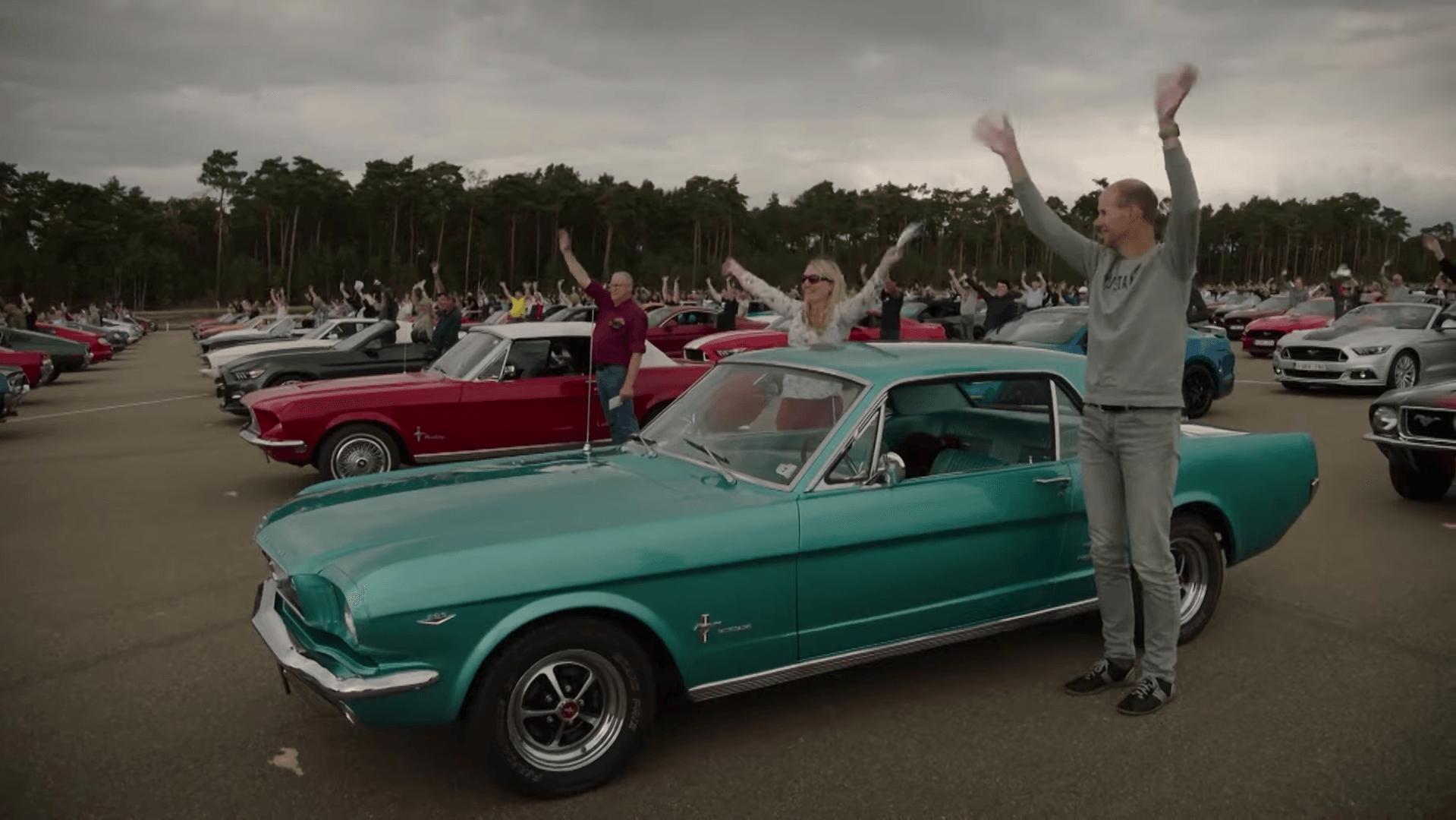Record Broken: Belgium Earns Biggest Mustang Meeting Record