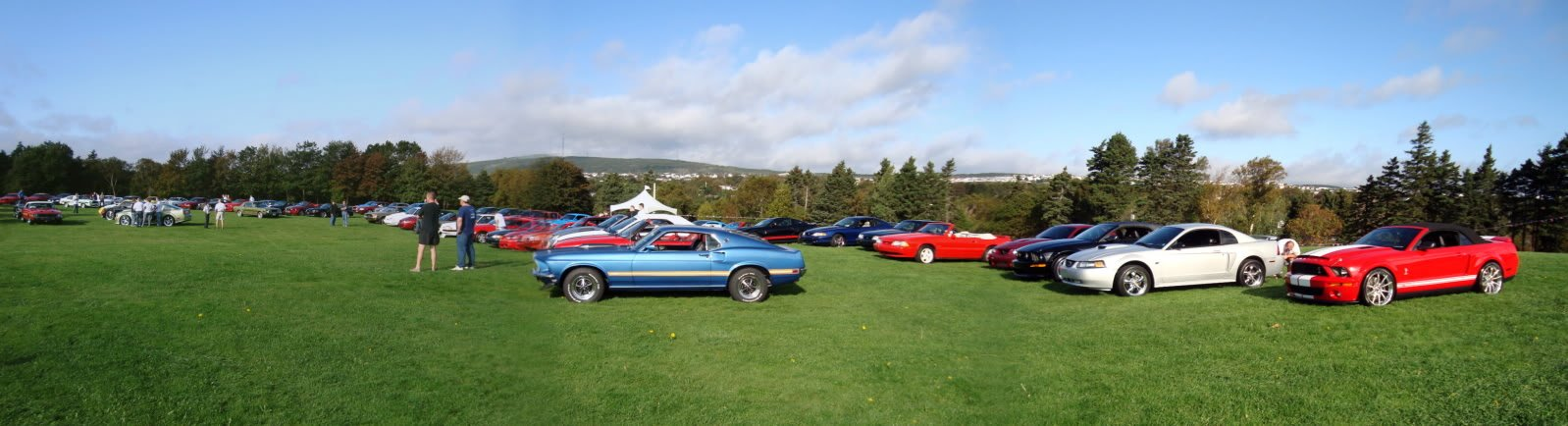 Mustangs in the Park: All Ford Mustangs Car Show in St. John's, Newfoundland-seahorse-62c69f7e.jpg