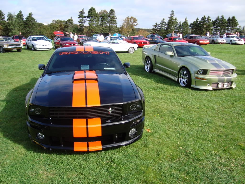Mustangs in the Park: All Ford Mustangs Car Show in St. John's, Newfoundland-seahorse-7efafd7f.jpg
