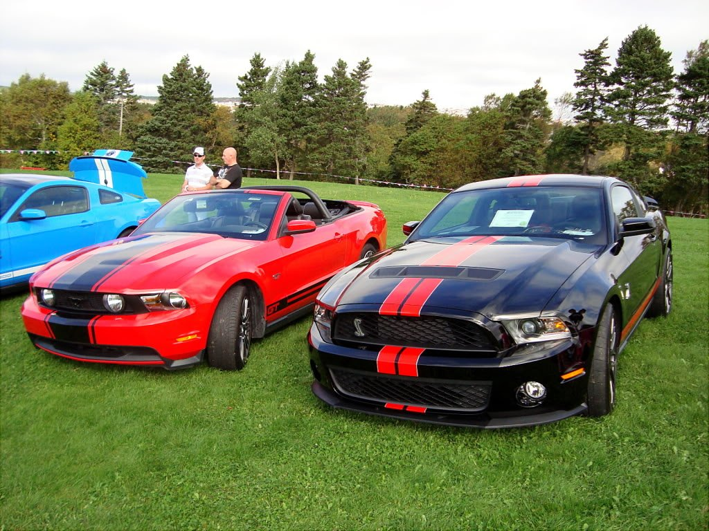Mustangs in the Park: All Ford Mustangs Car Show in St. John's, Newfoundland-seahorse-e1db0a89.jpg
