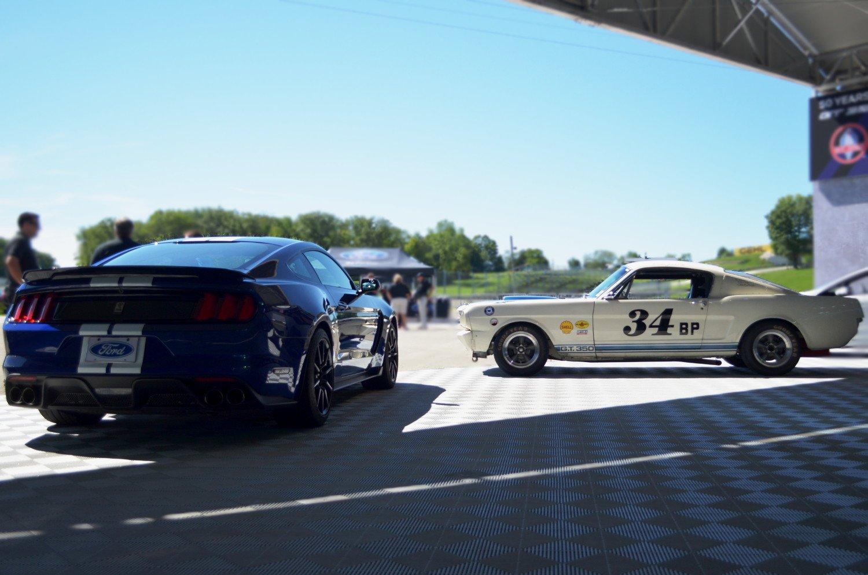 Shelby-GT350-rear-w_old