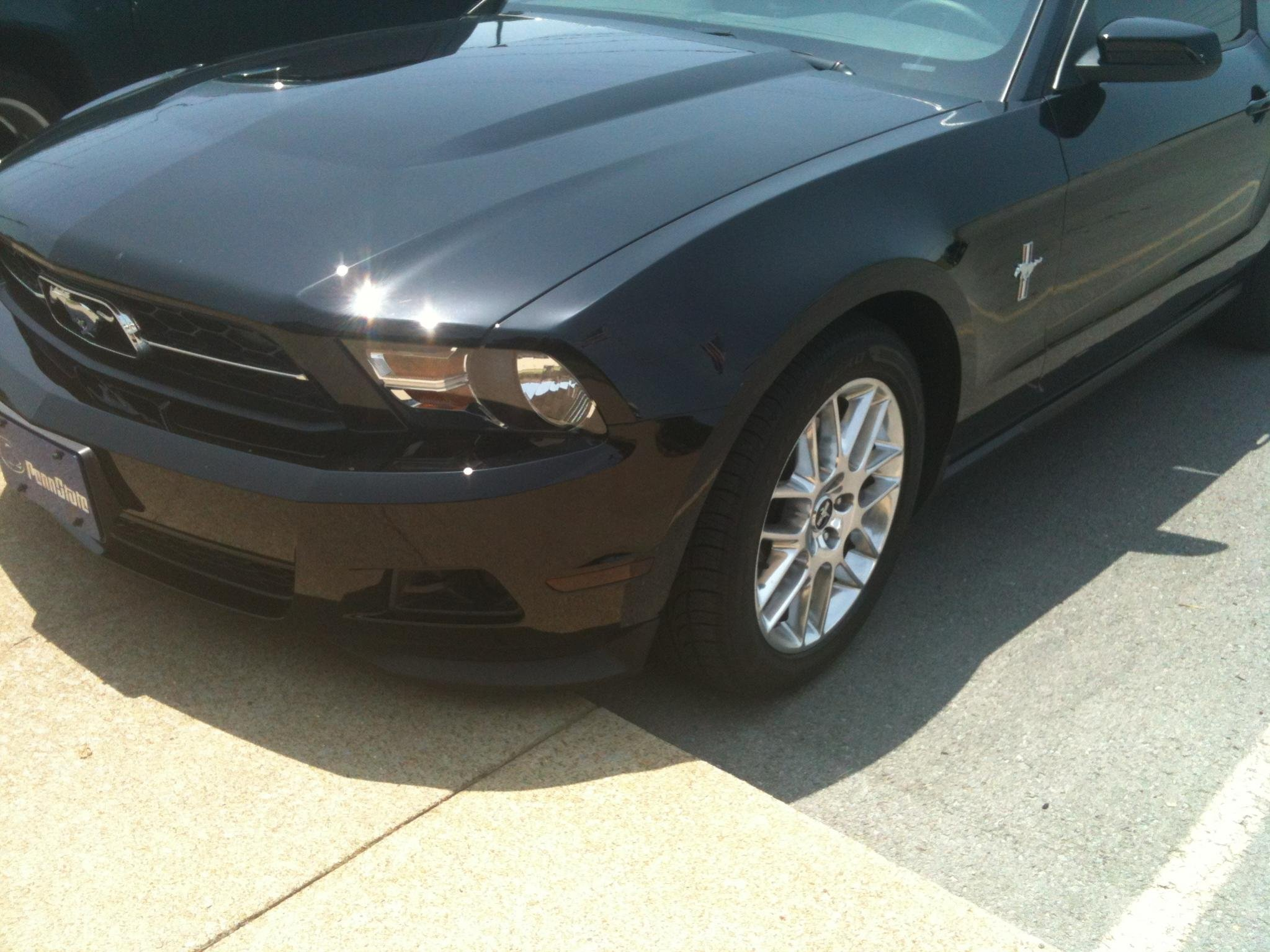2012 Mustang V6 New to Site-side-tint.jpg