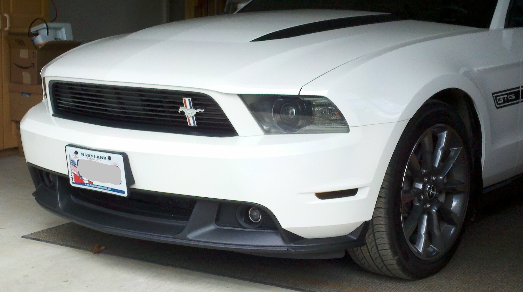 click image for larger version name stang2jpg views 21886 size 6754