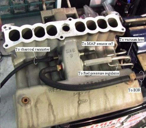1988 mustang gt smog pump delete vacuum lines and belt length rh allfordmustangs com ford 5.8 smog pump diagram