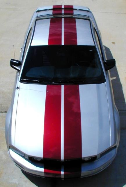 04 Mustang Gt >> New Stripes on my Satin Silver Stang - Ford Mustang Forum