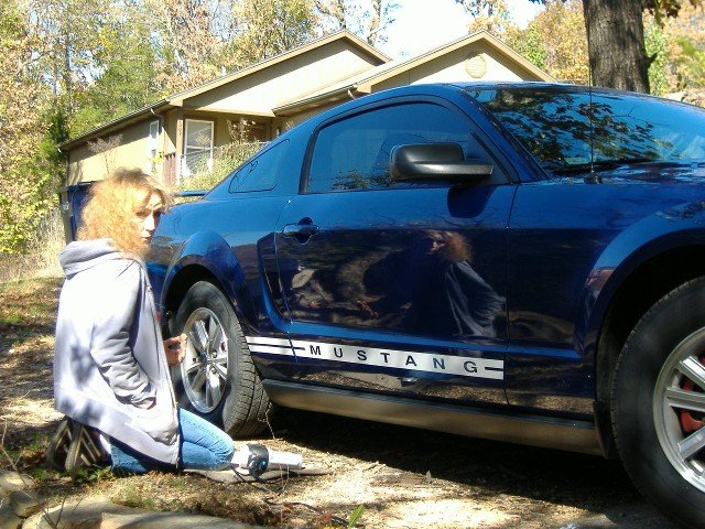 Rocker Panel Decals Ford Mustang Forum