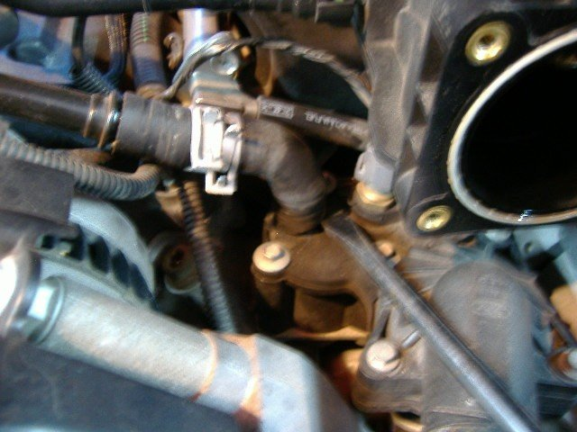 "2005 V6 Mustang thermostat and housing replacement ""how to with pics""-t-stat7-remove-small-l-hose-left.jpg"