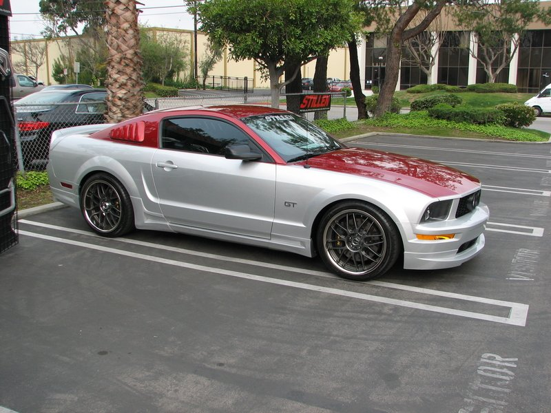 Paint Ideas Ford Mustang Forum