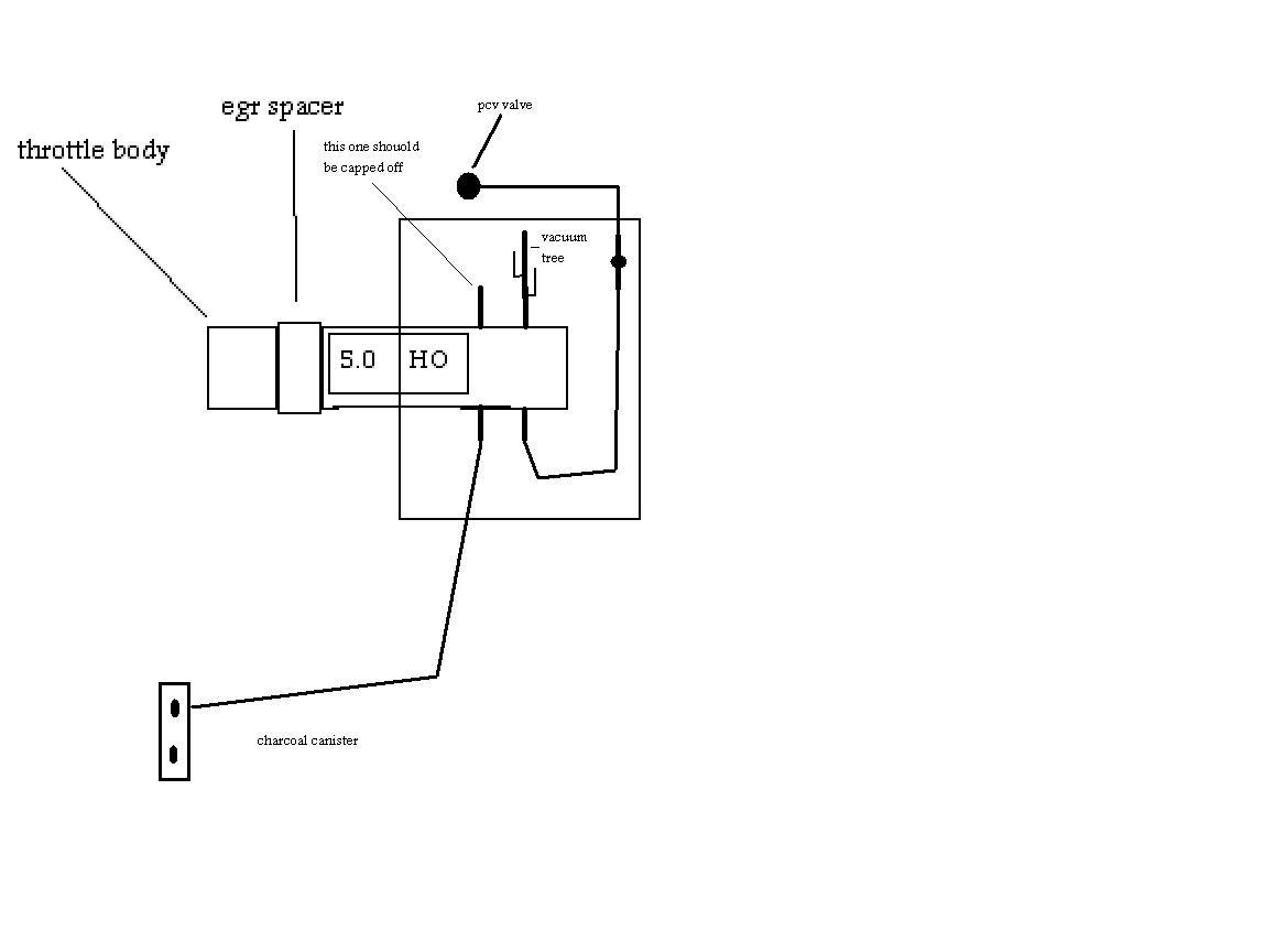 upper plenum vacuum line help 1988 mustang gt