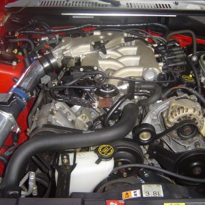 2002 Mustang Coupe CAI Installed