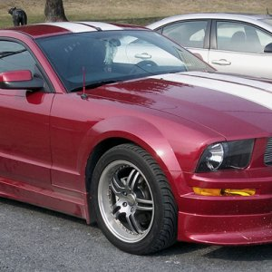 Magicc's Mustang (Front Side)
