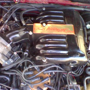 1994 Mustang GT Engine 5.0