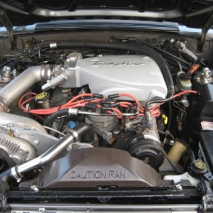 my engine and car degine