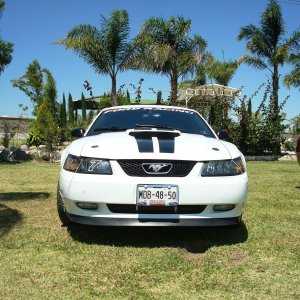 mustang gt 2004 40th anniversary