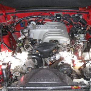 92 Lx Convertible Stock 5.0L 302..Replaced by a D.S.S XR410.