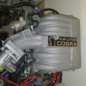 1995 Cobra R 5.8 liter engine