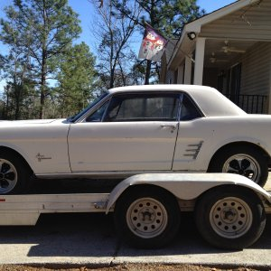 My New 1966 Mustang 289 Coupe
