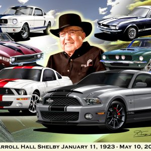 The Official Mustang Artwork of Danny L Whitfield