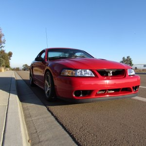 1999 Mustang Cobra Coupe