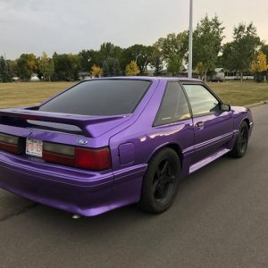 Robs 1990 GT