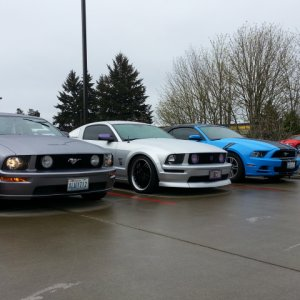 Mustang Tribute 50 Years