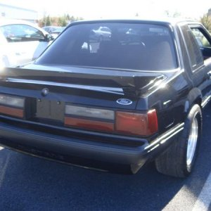 1981 Ford Mustang Notchback LX